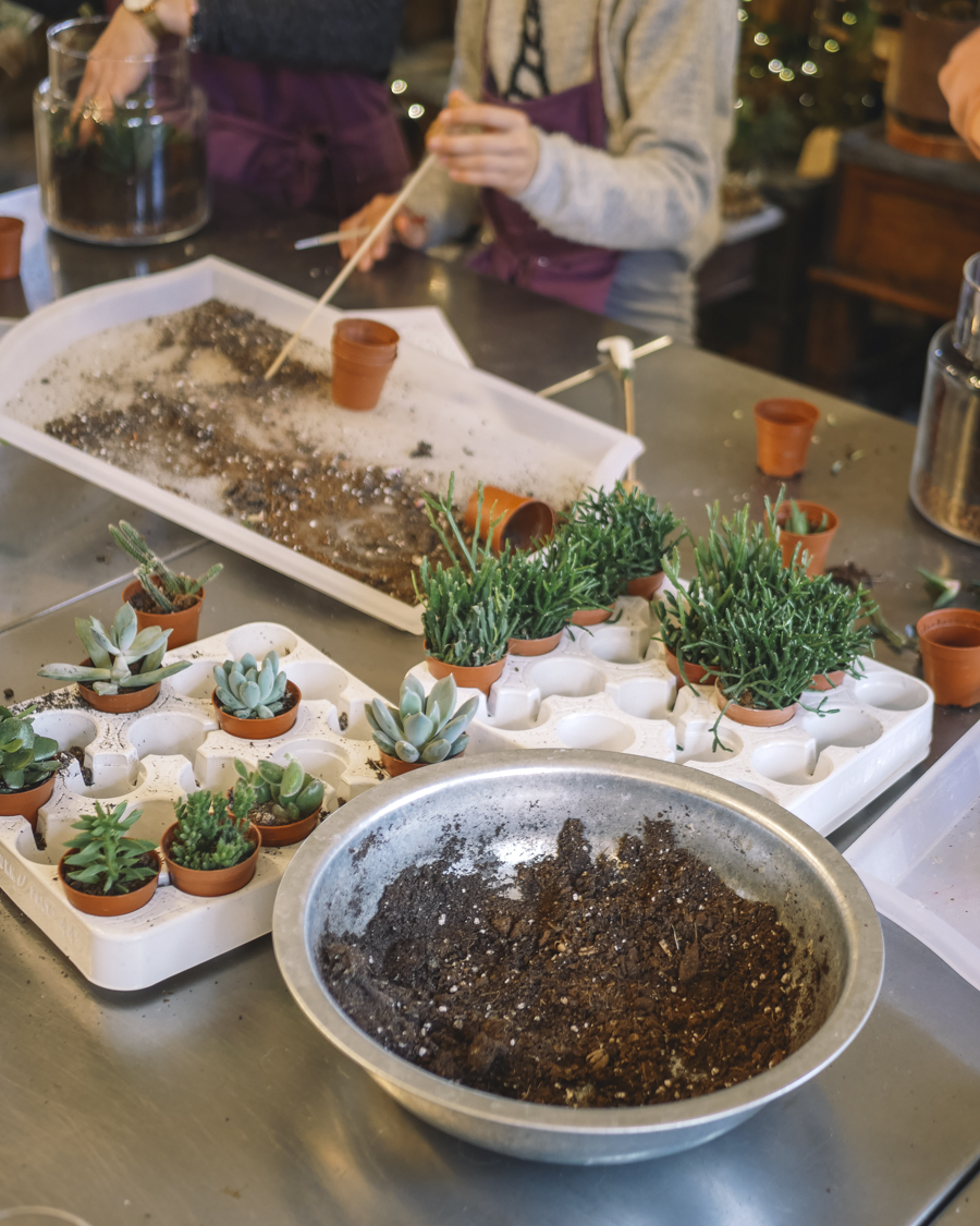 Cours d'art végétal chez Destin d'une brindille