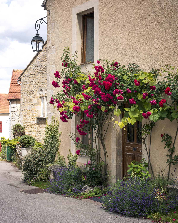 Flavigny-sur-Ozerain un des plus beaux villages de France
