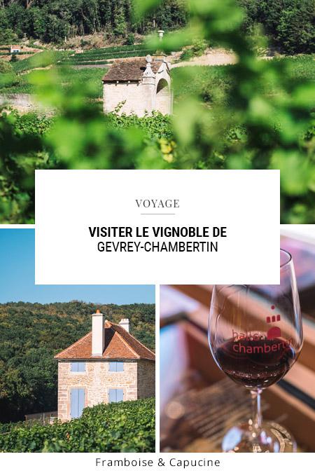 Visiter le vignoble de Gevrey-Chambertin